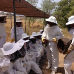 Beekeepers For One Day!